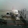 今日は東京出張です。羽田は雨。