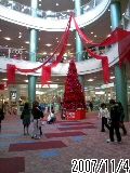 すっかりクリスマスモードかな?