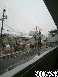 大阪も大雪ですよ!