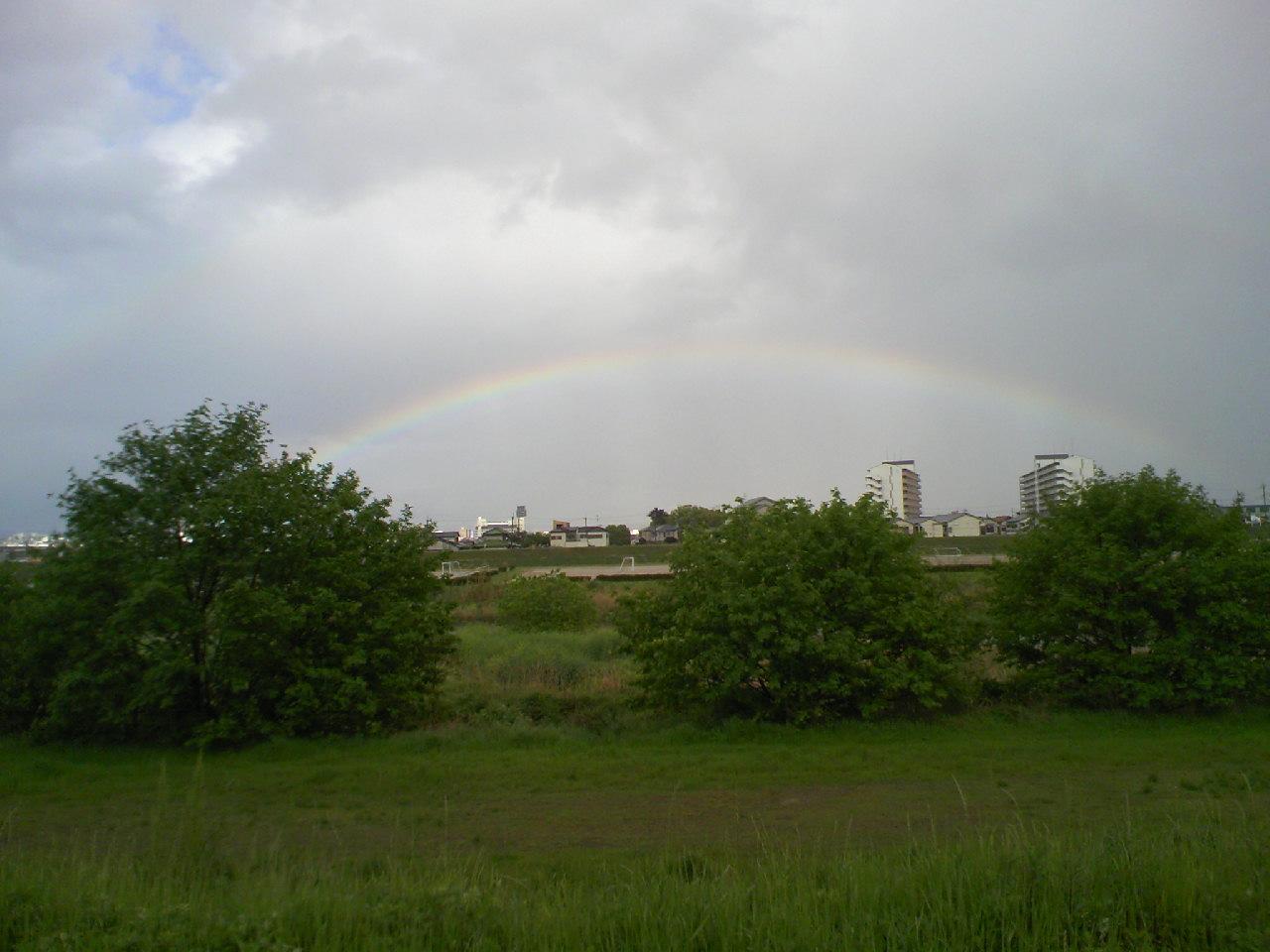 土砂降りの後は虹