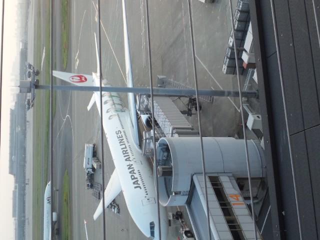 嵐ジェット発見 羽田空港展望台