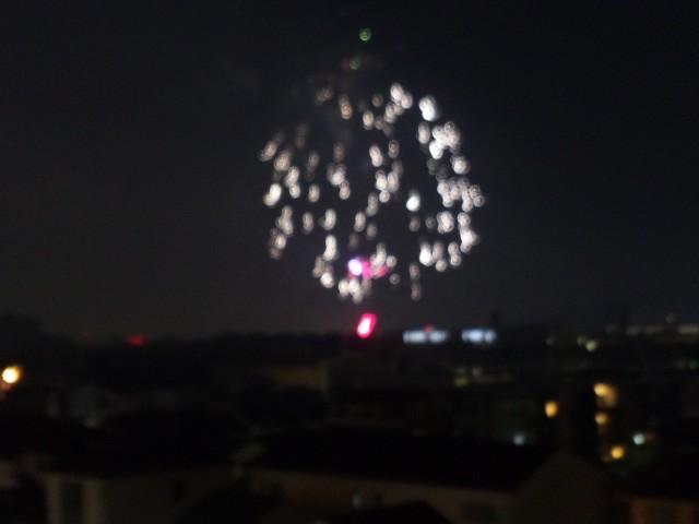 大阪池田市 猪名川花火大会 満開です